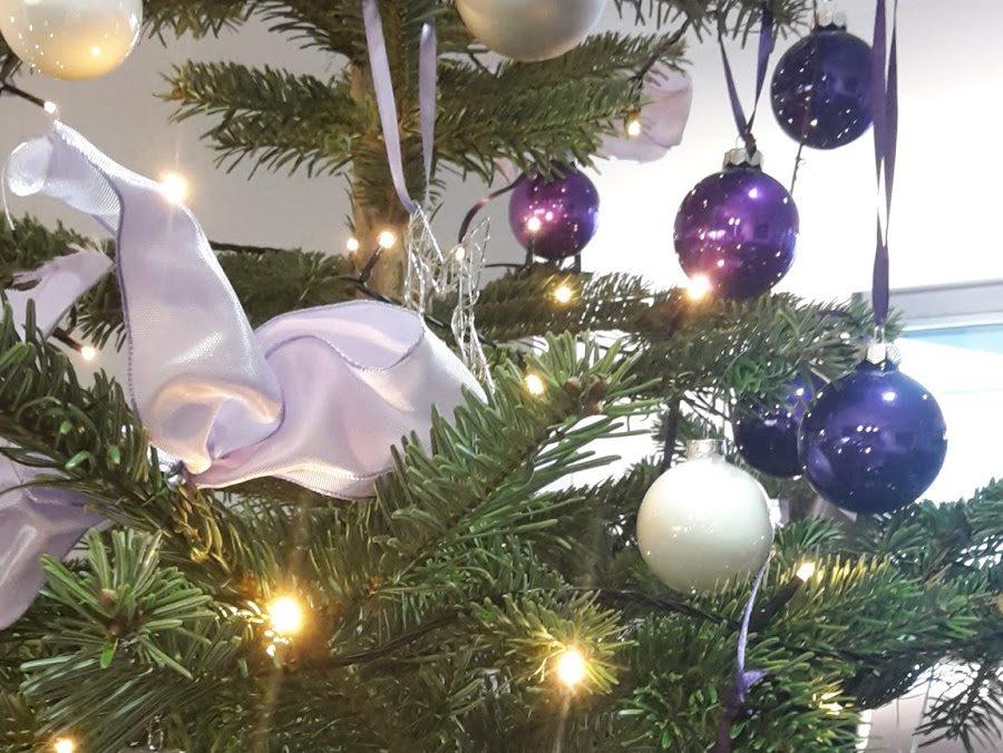 Weihnachtsbaum Natürlich.Oh Tannenbaum Surf Media Gmbh