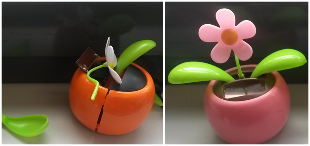 Blumen_FB