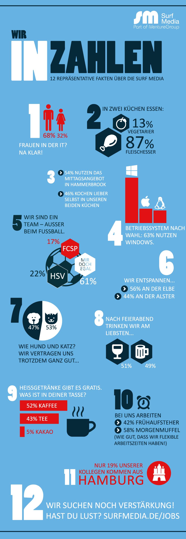Infografik Surf Media